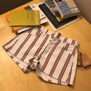 Reformation Shorts - Charlie Denim Shorts